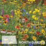 North Dakota Blend, Wildflower Seed - 1 Ounce thumbnail number null
