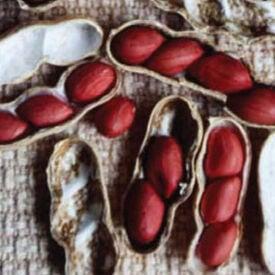 Spanish, Peanut Seeds