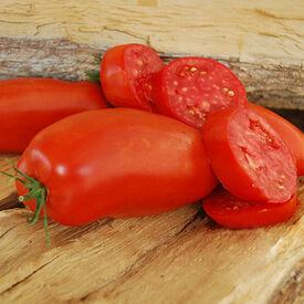 Jersey Devil, Tomato Seeds