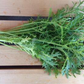 Green Frills Mustard Seed, Greens