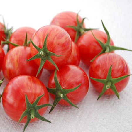 Pink Bumble Bee, Organic Tomato Seeds - Packet image number null