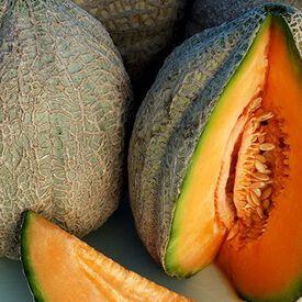 Pike, Melon Seeds