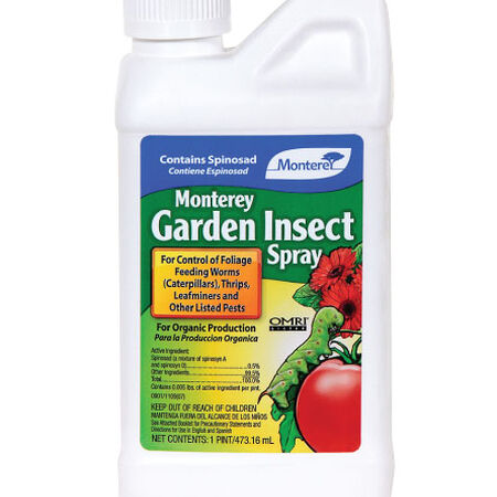 Garden Insect Spray, Pest and Disease - Pint (16 Ounces) image number null