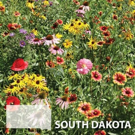 South Dakota Blend, Wildflower Seed