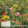 South Dakota Blend, Wildflower Seed - 1 Ounce thumbnail number null