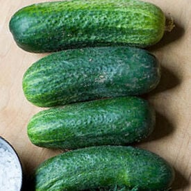 Homemade Pickles, Cucumber Seeds