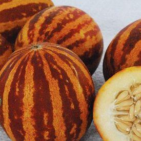 Rich Sweetness, Melon Seeds