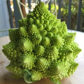 Romanesco, Broccoli Seeds