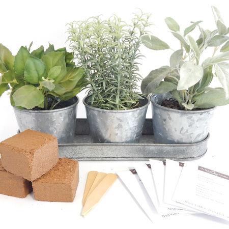 Metal Herb Garden Kit (Round), Garden Gifts - Verdigris Copper image number null