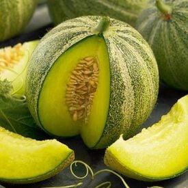 Haogen, Organic Melon Seeds