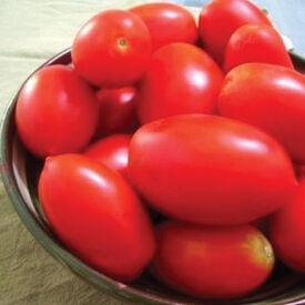 Rio Grande, Tomato Seeds