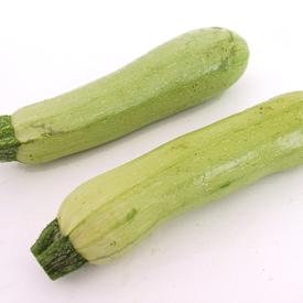 Marrow Segev, (F1) Squash Seeds