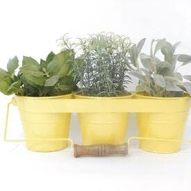 Metal Herb Kit with Handle, Herb Kits