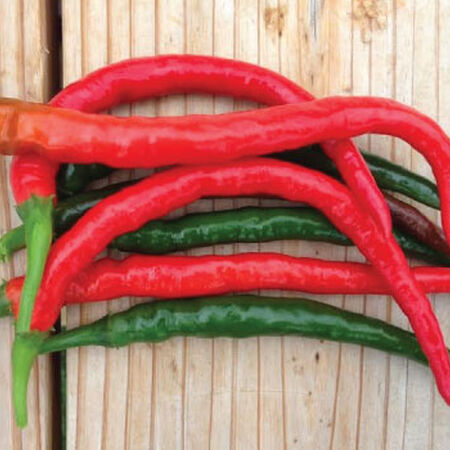 Cayenne Long Red Slim, Pepper Seeds - Packet image number null