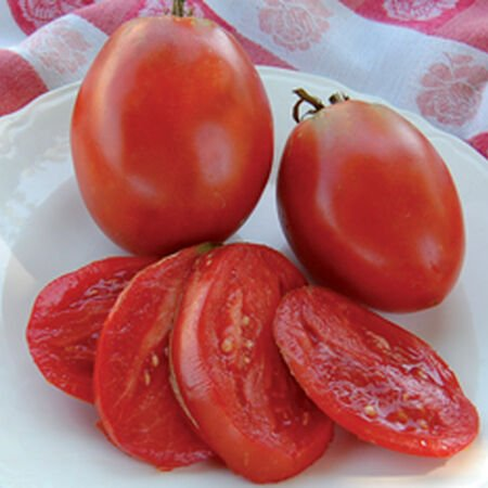 Amish Paste, Tomato Seeds image number null