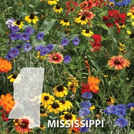 Mississippi Blend, Wildflower Seed