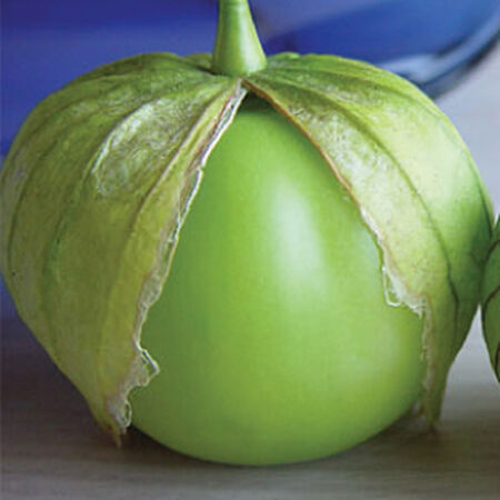 Verde, Tomatillo Seeds - Packet image number null