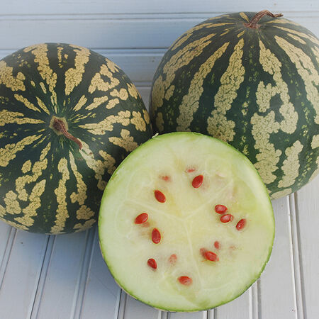 Citron Red Seeded, Watermelon Seeds - Packet image number null