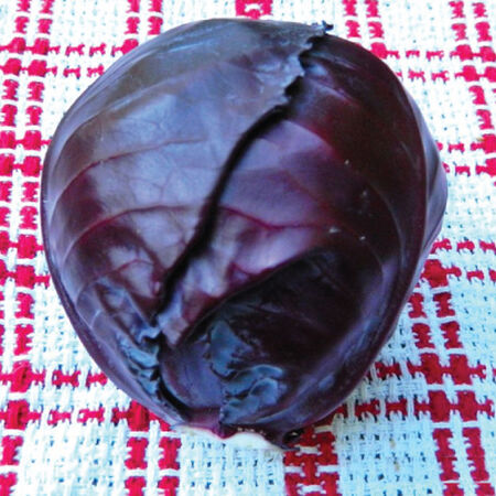 Red Acre, Cabbage Seeds - Packet image number null