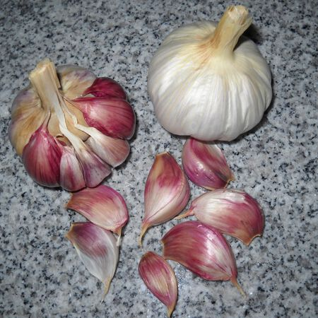 Ajo Rojo, Garlic image number null