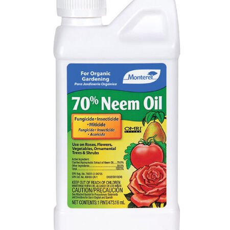 70% Neem Oil Seed,  Pest and Disease - 16 Ounces image number null