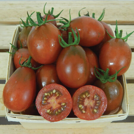 Black Plum, Tomato Seeds image number null
