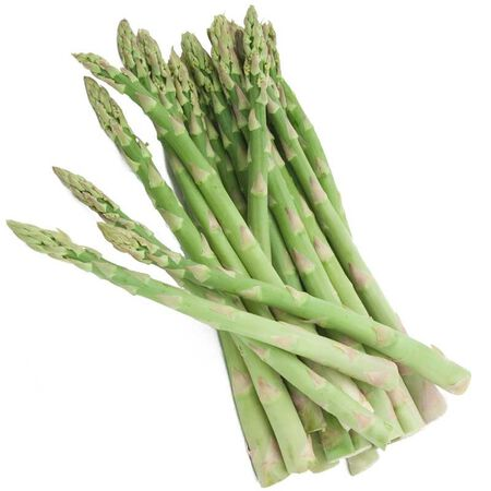 Apollo, Asparagus Seeds - Packet image number null