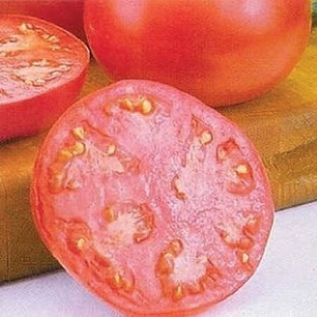 Pink Girl, (F1) Tomato Seeds image number null