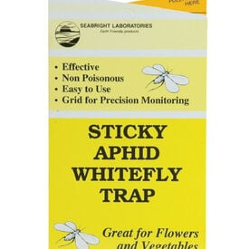 Sticky Aphid/Fly Traps Seed,  Pest and Disease