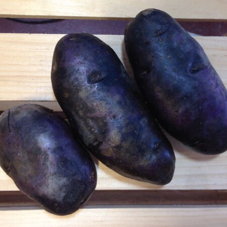 Magic Molly, Seed Potatoes - 2 Pounds image number null