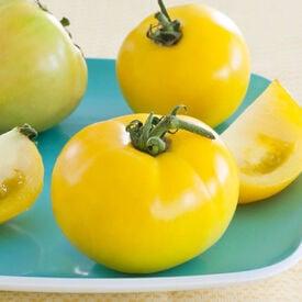 Lemon Boy, (F1) Tomato Seeds