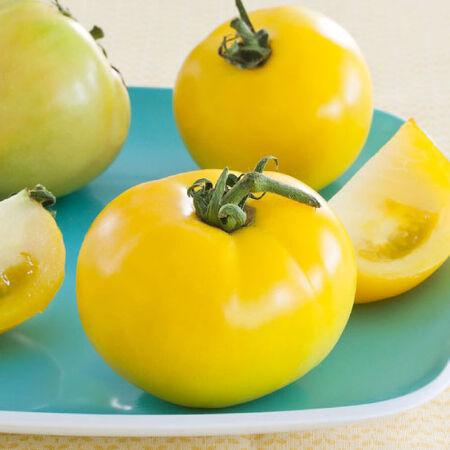 Lemon Boy, Tomato Seeds - Packet image number null