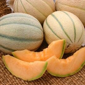 Honey Rock, Melon Seeds