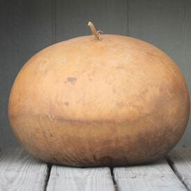 Bushel, Gourd Seeds