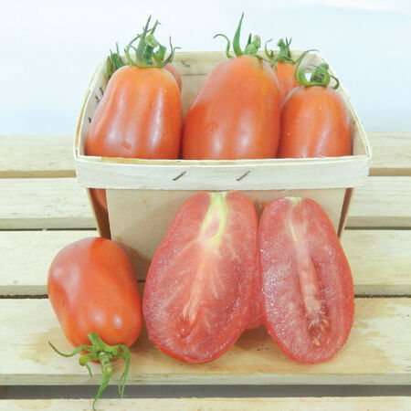 San Marzano, Tomato Seeds image number null