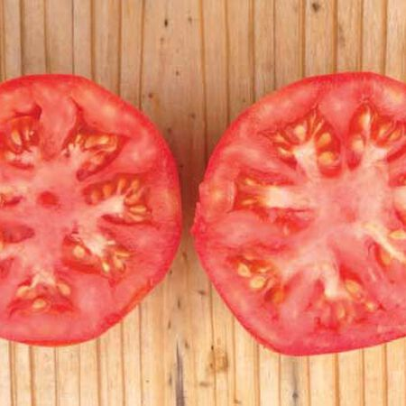 Marglobe Supreme, Tomato Seeds - Packet image number null