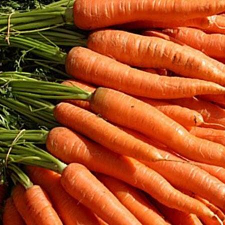 Little Finger, Carrot Seeds - Packet image number null