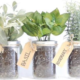 Mason Jar, Herb Kits