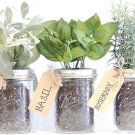 Mason Jar, Herb Kits