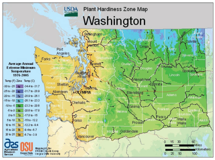 Washington Zone Hardiness Map