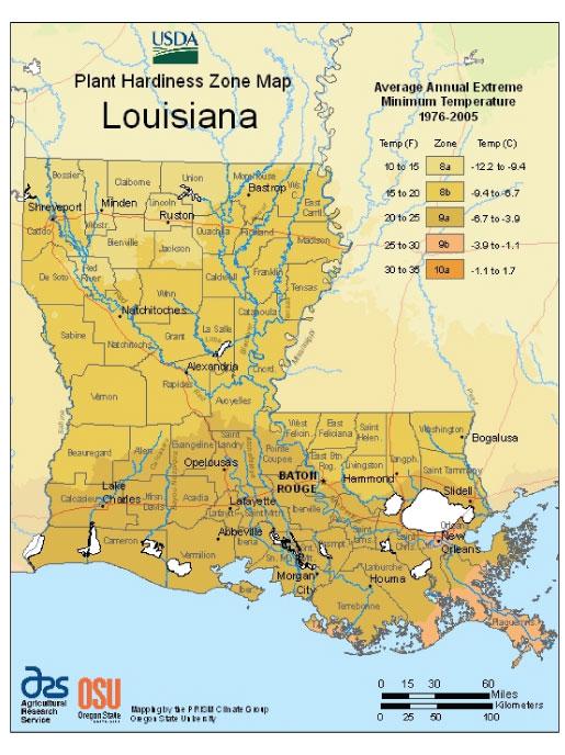 Louisiana Zone Hardiness Map