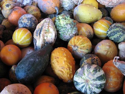 col-sm-mix-gourd-seeds