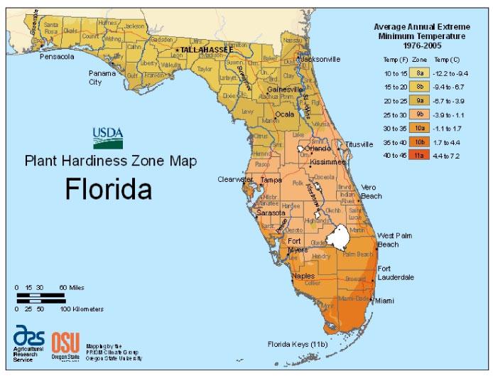 Florida Zone Hardiness Map