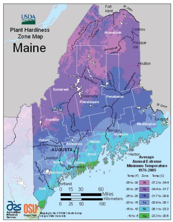 Maine Zone Hardiness Map