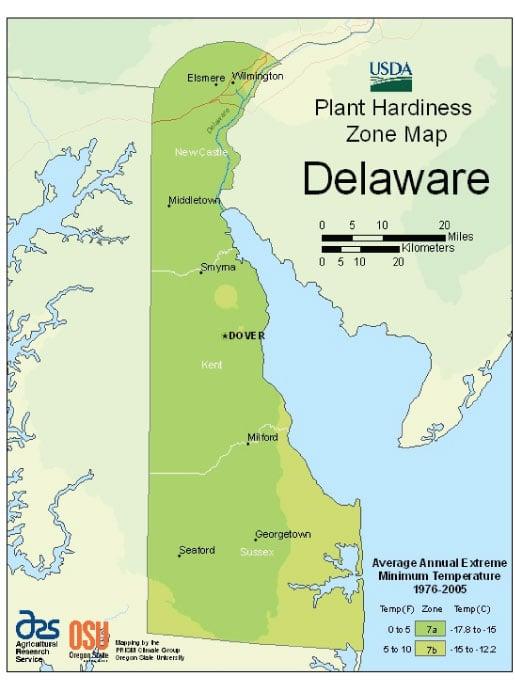 Delaware Zone Hardiness Map