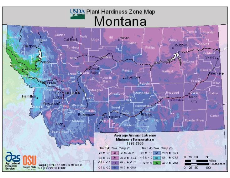Montana Zone Hardiness Map